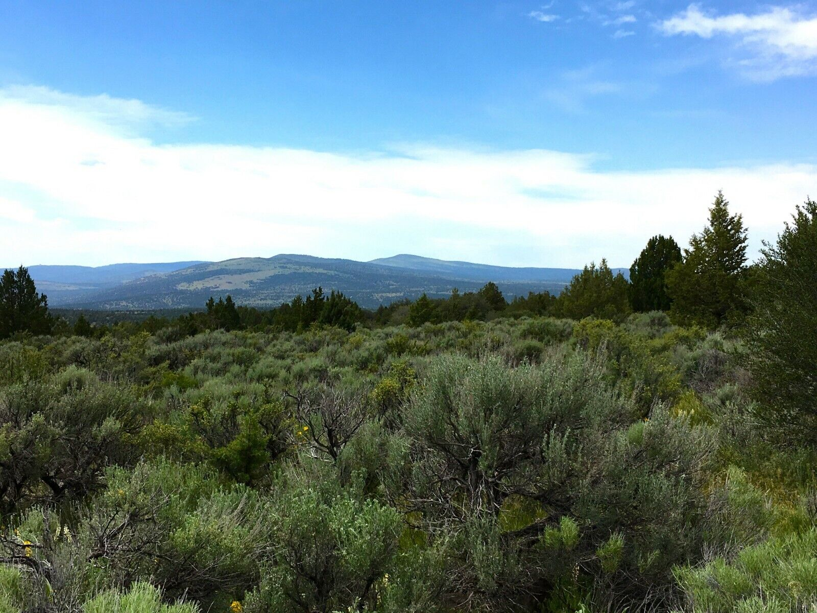 20.42 ACRES NORTHERN CALIFORNIA VIEW PROPERTY VIEWS  - $29,995.00