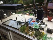 Fish Tank Quinns Rocks Wanneroo Area Preview