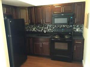 Fully-Renovated Bachelor Suite Across from Public Gardens!