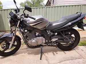 Suzuki GS500 Naked Rutherford Maitland Area Preview
