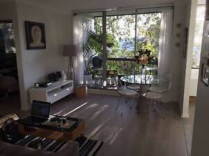 Fully furnished, Newly Renovated Master Bedroom for Rent Centennial Park Eastern Suburbs Preview