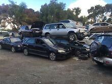 Cash 4 Cars, Vans, Utes, 4x4, Trucks etc. Para Hills West Salisbury Area Preview