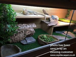 1x Reptile Carpet Substrate | Vivarium 48