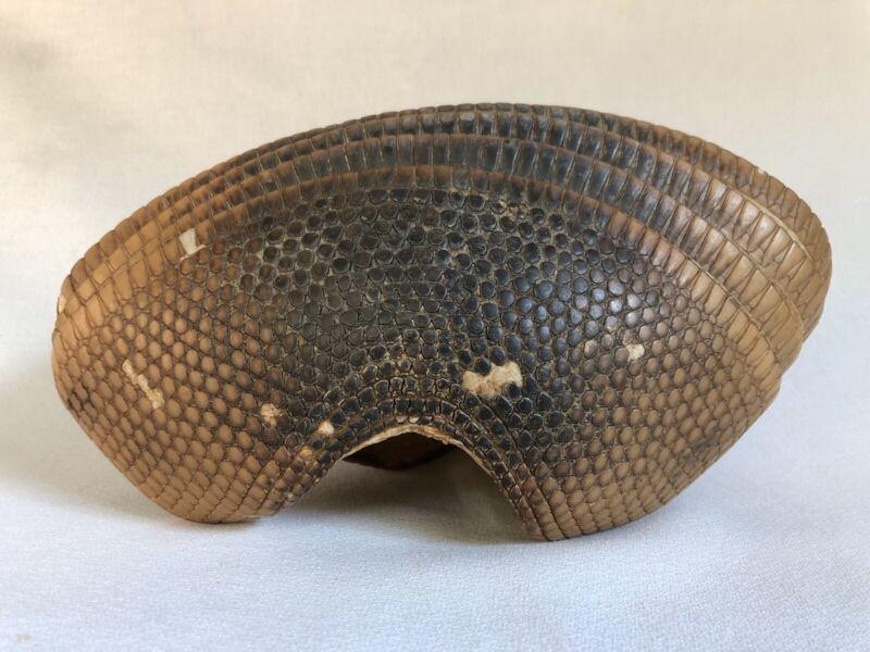 Real Vintage Natural Armadillo Animal Shell