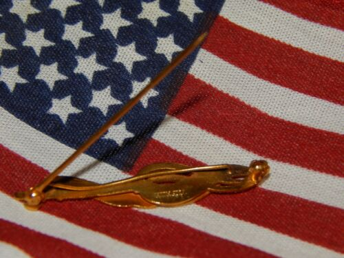 RARE DAR Ancestor Patriot Pin Col David Webster JE Caldwell Hand Engraved