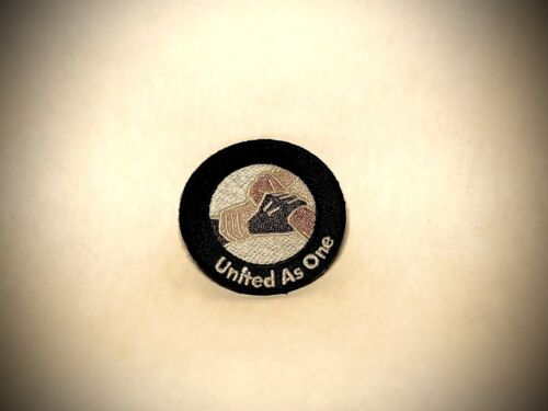 NCAA-IRON OR SEW UNITY PATCHES 5  - $30.00