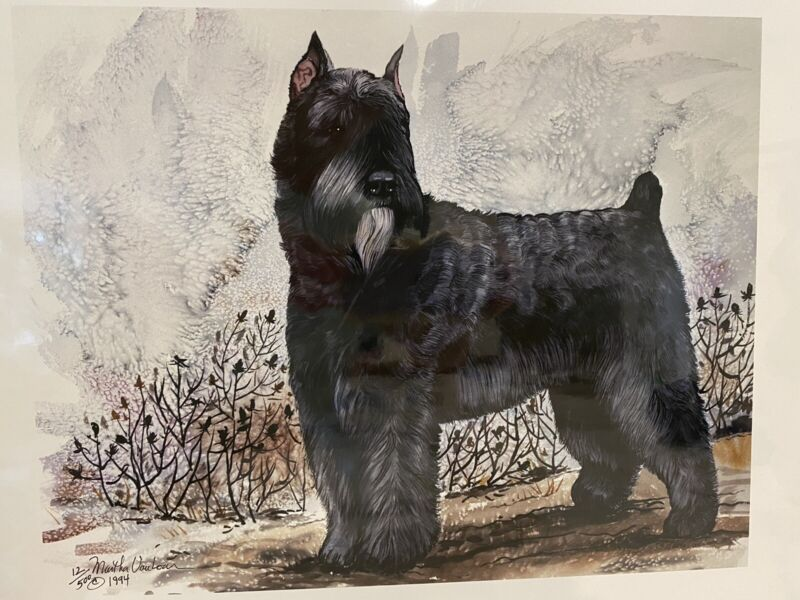 Bouvier Des Flandres Ltd Ed 11x14 Signed Print By Van Loan