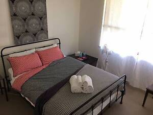 Fully furnished 1BR Wayville (3 months from August) Adelaide CBD Adelaide City Preview