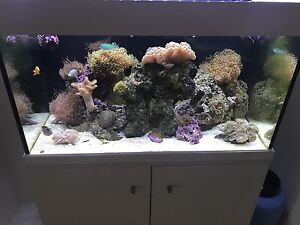 220L marine tank complete or seperate Southern River Gosnells Area Preview