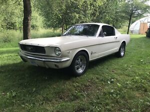 1966 Mustang for sale