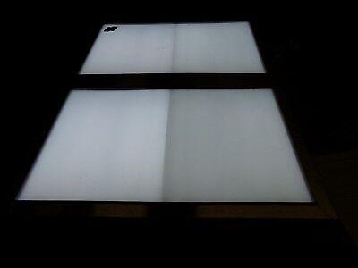 Wolf Light Model 300 Light Viewer X-ray Box V115 Cycles 60 Free Shipping