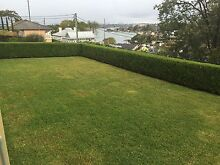 Morning/hedging/rubbish remove North Ryde Ryde Area Preview