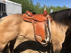 "16"" cutting saddle"