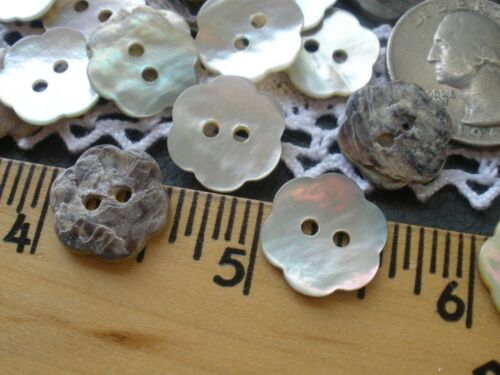 24 Real Shell Flower Shape 15MM MOP Buttons 2-hole 23L AGOYA Pearly White cool