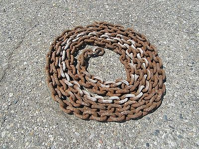 12 Inch Link Chain Logging Barn 20 Feet No Ends