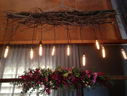 Vintage light display/ twisted willow