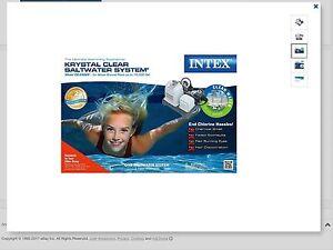 Intex salt water system