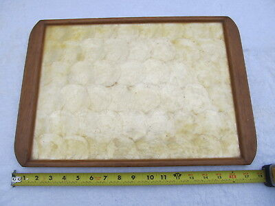 Shell Appetizer - Vintage Real Seashell Genuine Capiz Shell Serving Plate Appetizer Tray