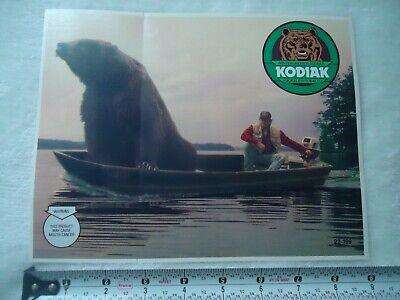 Kodiak Smokeless Tobacco ~ 9 X 7 Bear In Boat Rare Decal / Sticker