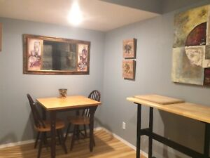 FULLY FURNISHED SUITE-All utilities /internet/cable inc