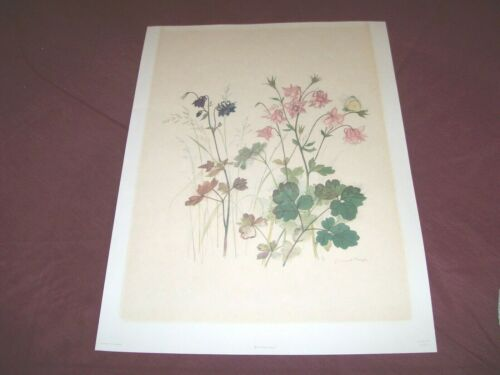 """Vintage Beautiful Litograph""""Columbine Flowers"""" Artist Hage"""