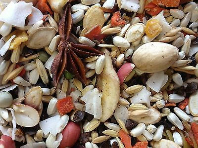 Hookbill Cuisine Bird Food Medium to Large Parrot African Gr