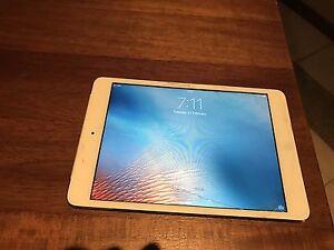 iPad mini Shailer Park Logan Area Preview