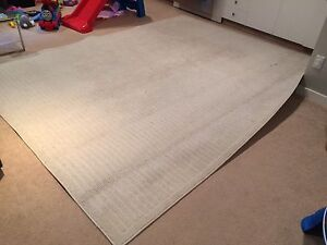 Contemporary Beige Area Rug