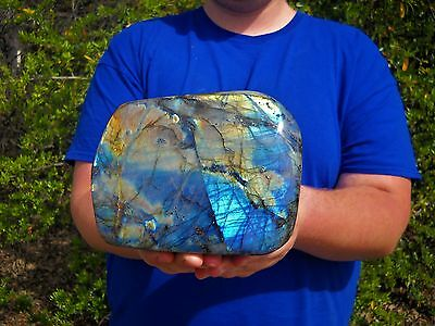 Large 7+ LB Labradorite Polished Stand / Madagascar  / Crystal Point /  cluster