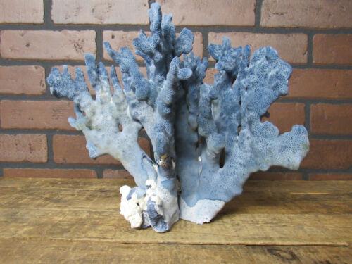 "Natural Genuine Light Blue Ridge Coral Home Decor 9"" x 7.25"" x11"" BL-535"
