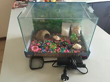 Fish/crazy crab starter kit Hillman Rockingham Area Preview