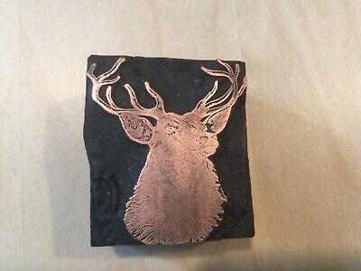 Letterpress Printing Print Block Deer 12 Point Buck