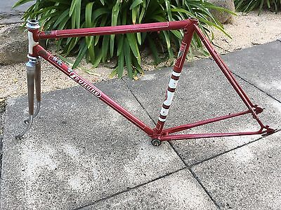 Vintage LEGNANO Olimpiade Record Specialissima 51cm Frame and Fork