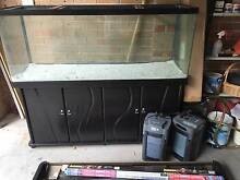 Large EHEIM  Aquarium with Accessories Pagewood Botany Bay Area Preview
