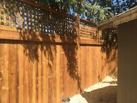 Carpenter deck fence service