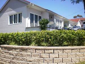 Urgent room with ensuite for rent $280 pw all bills included Denistone East Ryde Area Preview