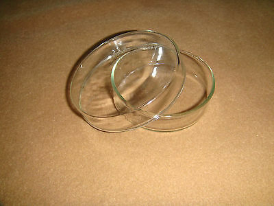 Glass Tissue Petri Dish60mmculture Dish Culture Plate With Cover10pcslot