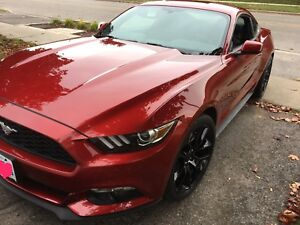 Selling 2017 RUBY RED v6 mustang