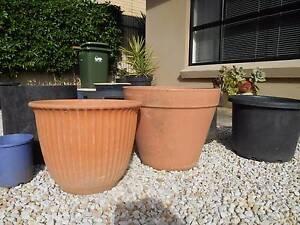 Planter pots Large round 7 plastic Lockleys West Torrens Area Preview