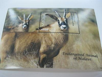 MALAWI-FAUNA-WILD ANIMALS-ENDANGERED ANIMAL