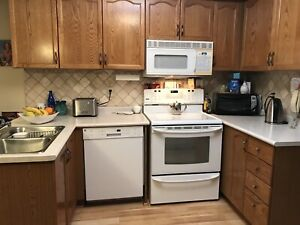 MUST GO- Honey Oak Kitchen Cabinets for sale!