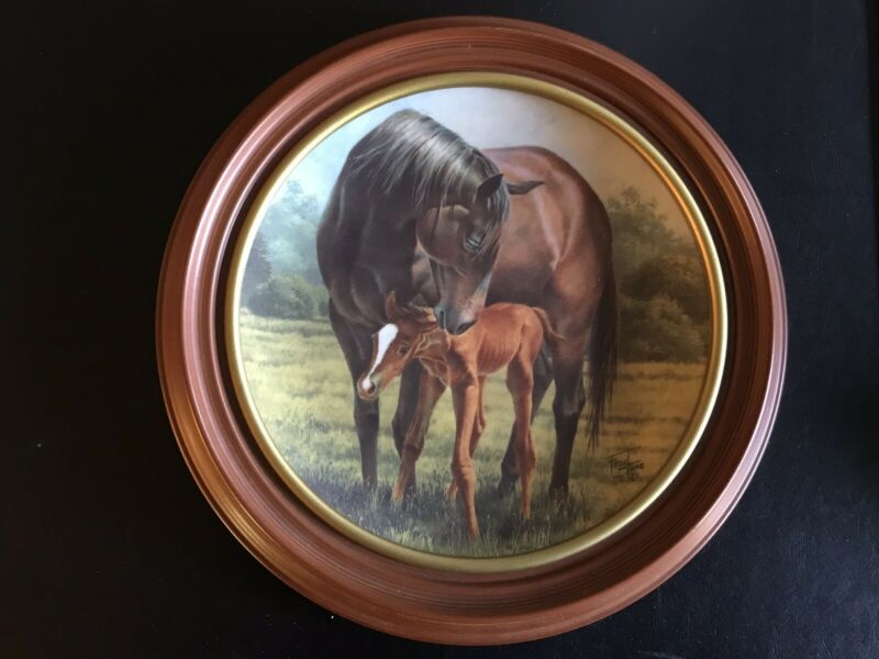 "The First Day 8.5"" by Fred Stone Horse Plate American Artist Mare & Foal w/frame"