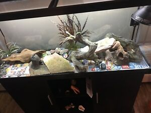 Fish tank accessories (SOLD)