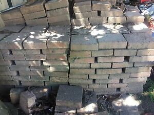 Bricks! $250 for the whole lot! Frenchs Forest Warringah Area Preview