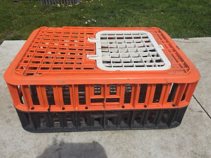 Chicken Crates High Quality