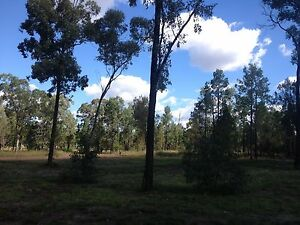 BARGAIN HALF ACRE BETWEEN DALBY & CHINCHILLA. Others from $13,800 Kogan Dalby Area Preview