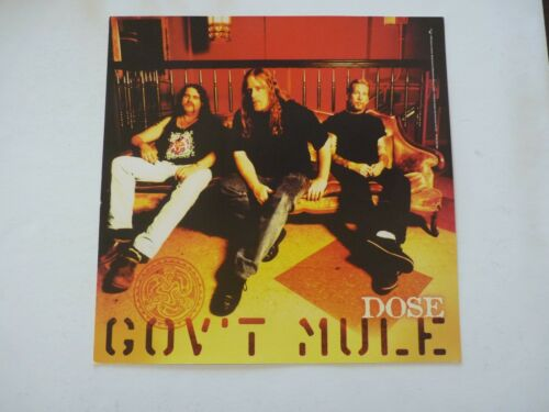 Govt Mule Dose Promo LP Record Photo Flat 12x12 Poster