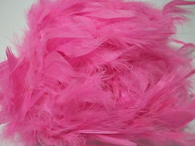 Hot Pink 40 gm 72