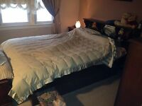 Queen size wood bedfframe and bookcase w mirror