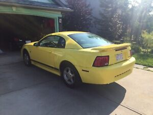 Sell or Trade - 2002 Mustang